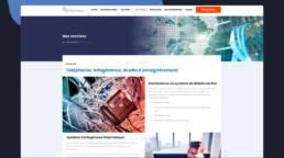 bjs performance - fabrice vermeulen - infografika - webdesign