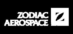 logo zodiac aerospace - fabrice vermeulen - infografika - webdesigner