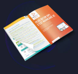 STF - infografika - Webdesigner - graphiste - fabrice vermeulen - branding - print - charte graphique - Société Française de Santé Digitale - publicité -programme 2019
